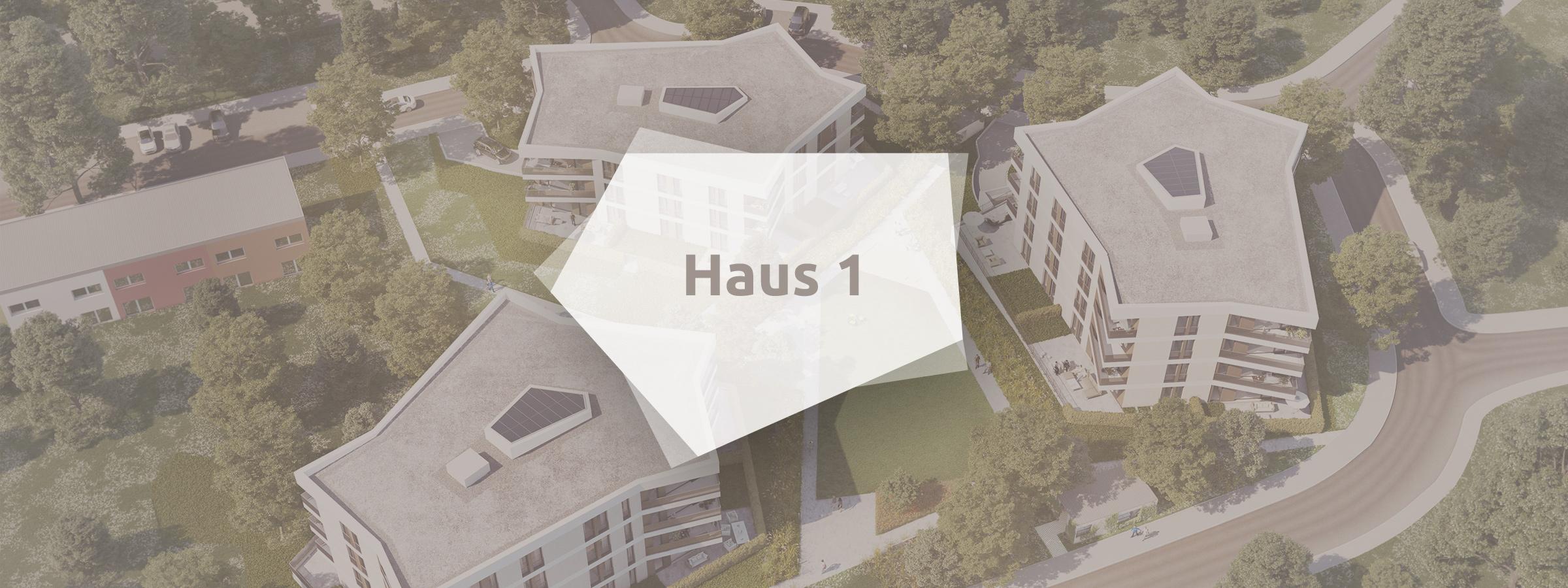 panorama3-leben-am-hutholz-haus1-header