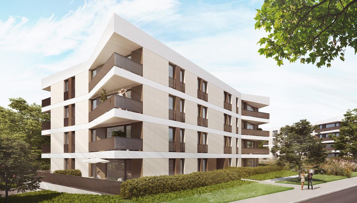 panorama3-leben-am-hutholz-haus3