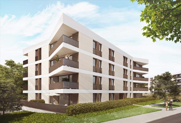 panorama3-leben-am-hutholz-der-lebensraum-teaser